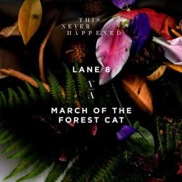 Lane 8 - March of the Forest Cat (Original Mix)